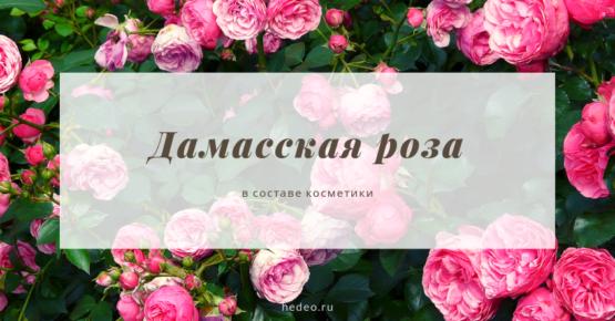 Дамасская роза