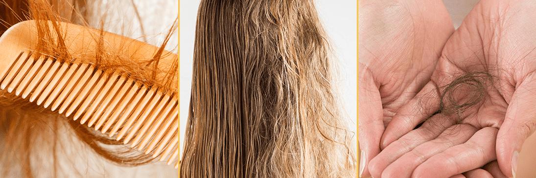 Nourishing Solution Yolk-Mayo Shampoo, EVAS Cosmetic, линия VALMONA, шампунь для волос ПИТАНИЕ купить в интернет магазине hedeo